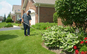 Lawn-Maintenance-Weed-Whacking